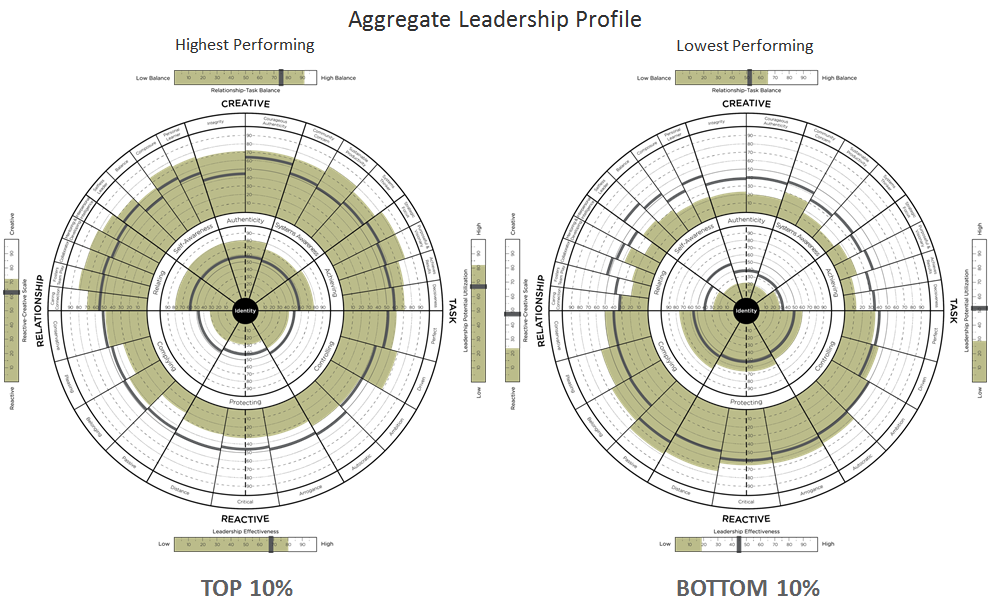 Aggregated Leadership Profiles 1